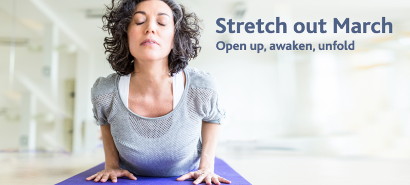 stretching exercises online